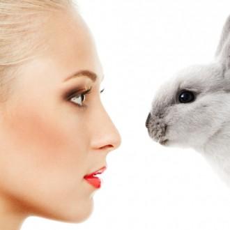 Тестването върху животни – жестоко и ненужно