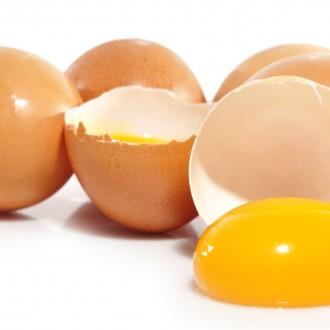 Яйцата – перфектният протеин, но не за човека